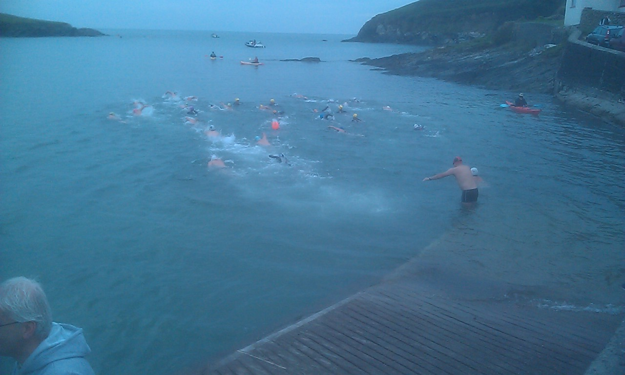 Open Water Conference 2013 Sandy Cove Swim